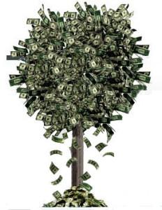 money-tree-351